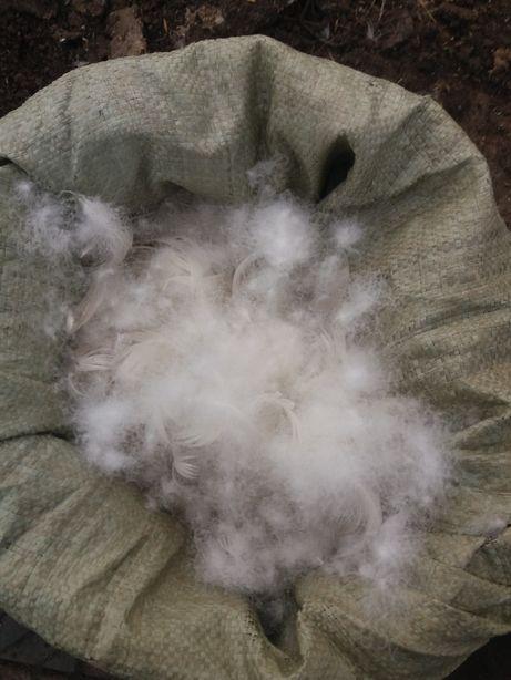 Продам  пух перо гусиное утиное