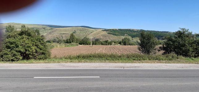 Vand teren intravilan Mihai Viteazu