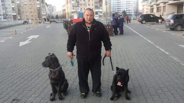 Servicii de dresaj canin