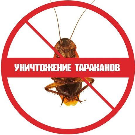Дезинсекция!Уничтожение тараканов, клопов,блох!