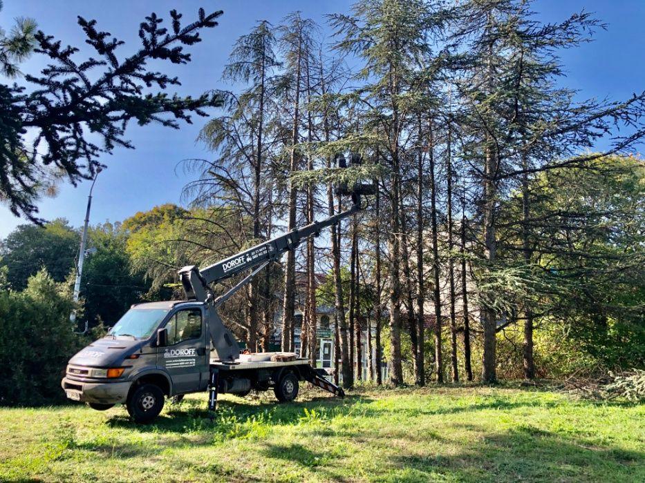 Рязане на дървета , Косене на трева, почистване на терени Варна