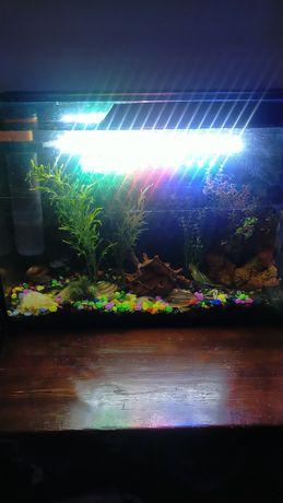Продам аквариум 100 литров