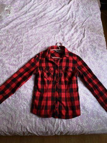 Terranova Риза