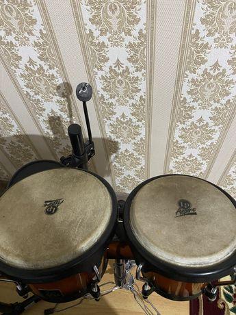 Lp bongo