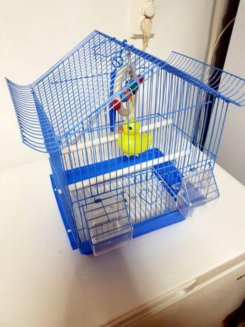 OFERTA! Colivie papagali mici (noua)