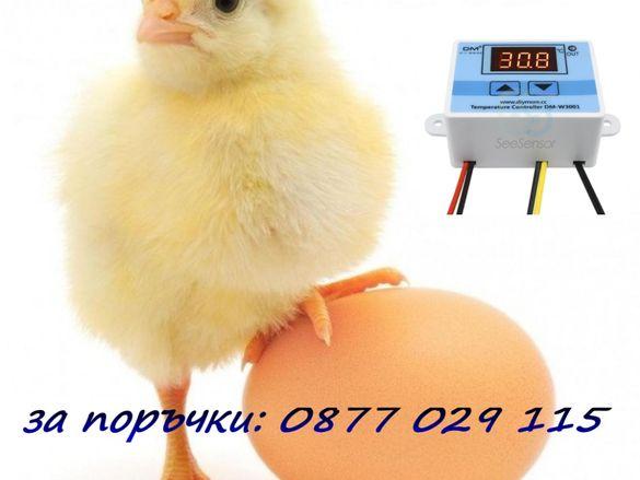 Терморегулатор за инкубатор 220V