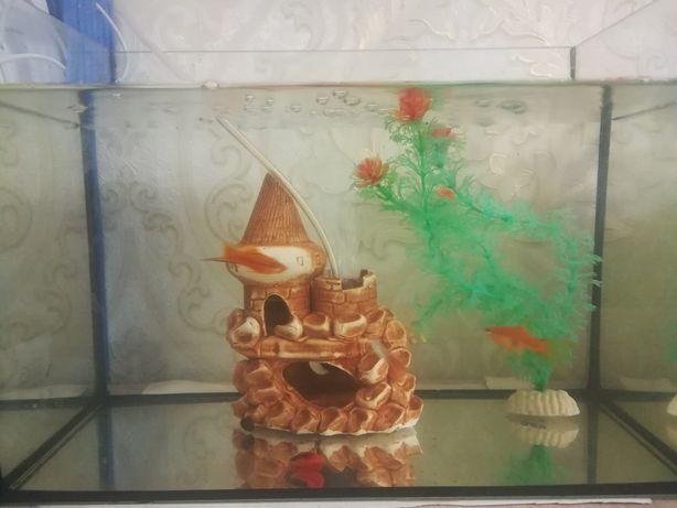 Продам аквариум 15 л.