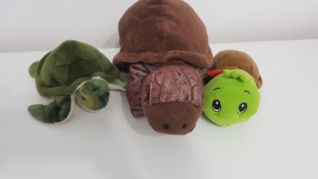 Familia de țestoase din pluș