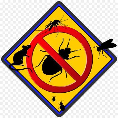 дезинфекция дезинсекция дератизация уничтожение клопов, тараканов,м