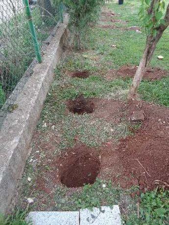 Копам дупки за ограда или дръвчета