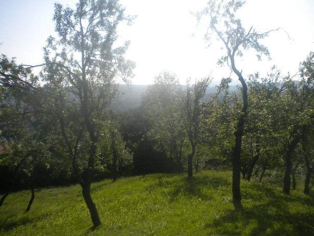 Schimb teren Breaza cu garsoniera in Ploiesti