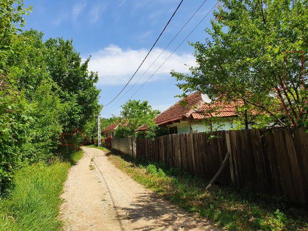 Vand proprietate cu 2 numere topografice gradina comuna in Calea Mare