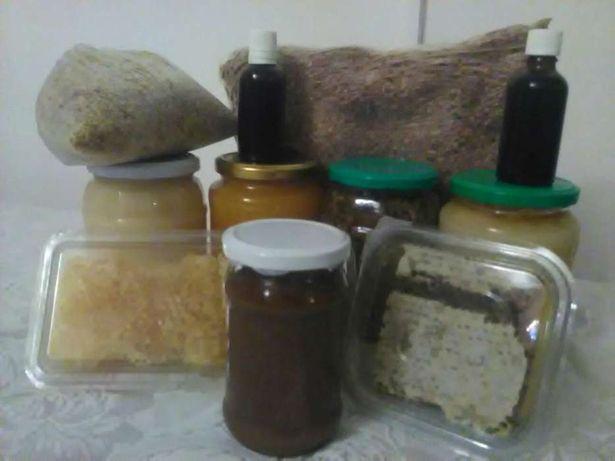 miere polifloră,salcam,rapita,coriandru,polen, faguri,propolis, cătină