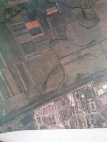 Teren agricol,3 Ha, la 4 km de Timisoara-Utvin,la 1.5 euro/m patrat