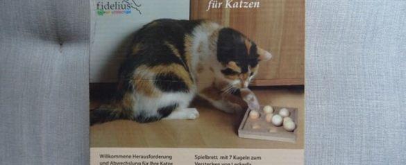 Интелигентна котешка играчка