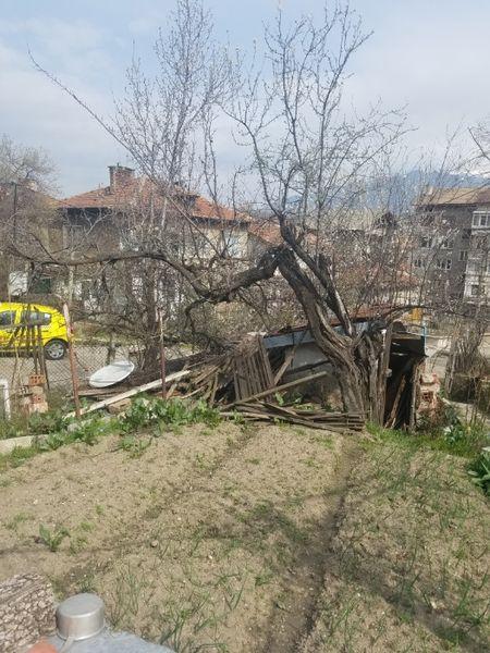 Почистване на дворове и запустели парцели ГРАД ДУПНИЦА гр. Дупница - image 1