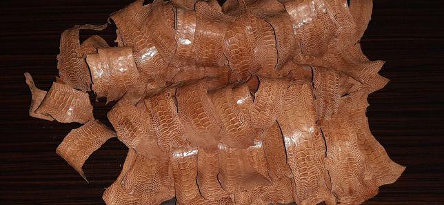 Piei picioare curcan pentru marochinerie
