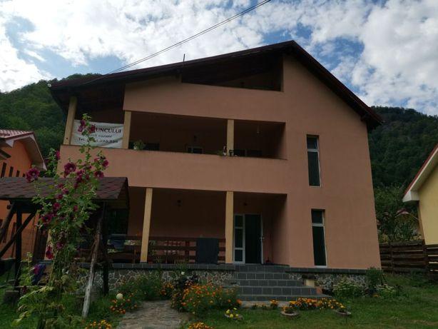 Vila 9 camere, Valea Lotrului, Sat Saliste - Bradisor, Comuna Malaia