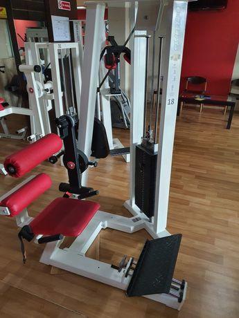 GYM 80  гръбна екстензия,уред за прасец с тежести, уред за рамо