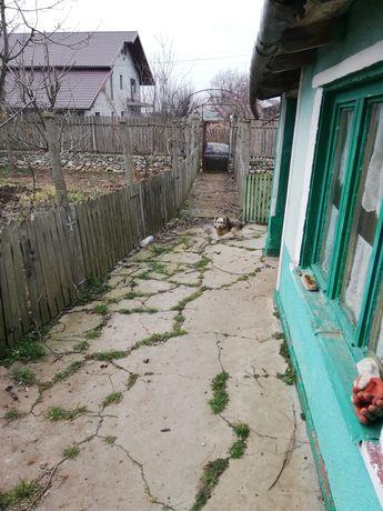 Casa batraneasca de vanzare/schimb cu apartament