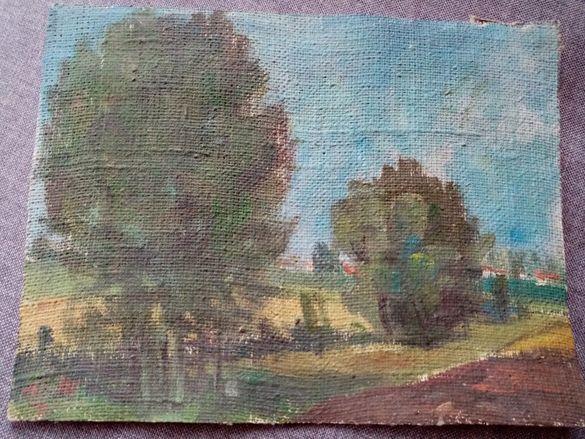 Картина платно маслени бои без рамка от 60-те години