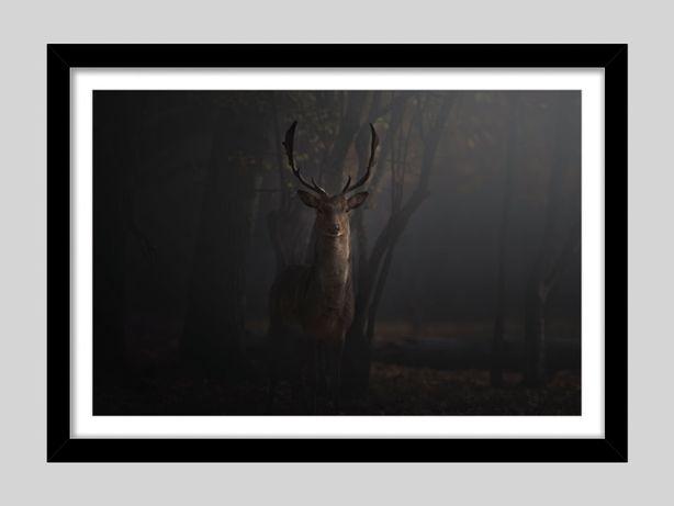 Tablou Print fotografie fine-art