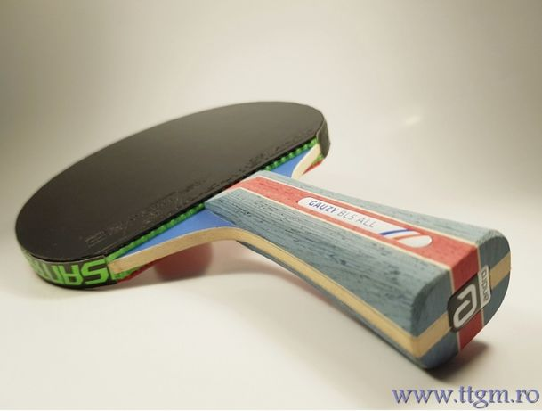 Paleta profesională tenis de masa Andro Gauzy/rasanter