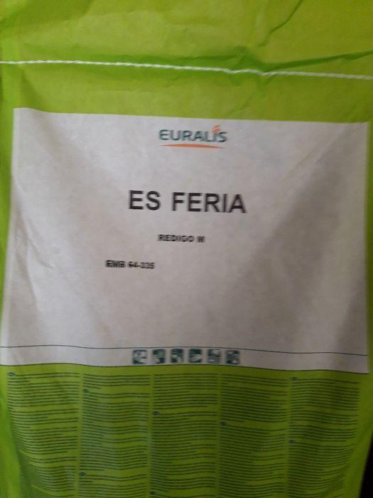 vand samanta porumb siloz Feria FAO 550, nr 1 in lume, de la EUralis!