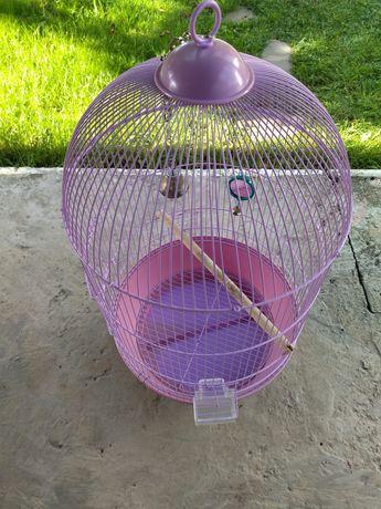 Vand colivie papagal