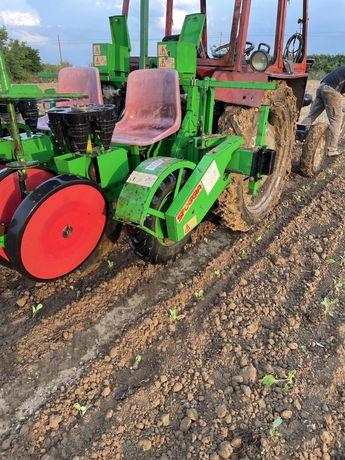 Sfoggia plantator rasaduri masina de plantat