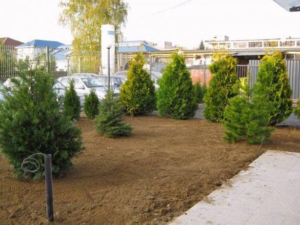 Земя, хумус за градини, озеленяване.
