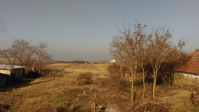Vand teren intravilan - intre case - sat Rauti, com. Uivar, Timis.