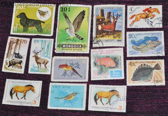 Продавам пощенски марки с птици и животни