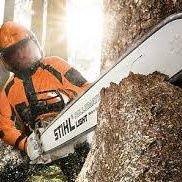 Рязане на дървета по алпийски способ