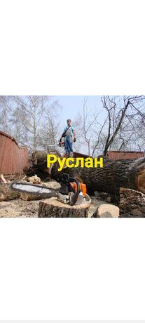 пилю дрова 3 000 тг  куб , деревья от 500 тг  и выше !
