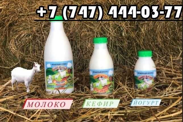 Козье молоко, козий кефир, сыр, йогурт, творог, сметана, курт.