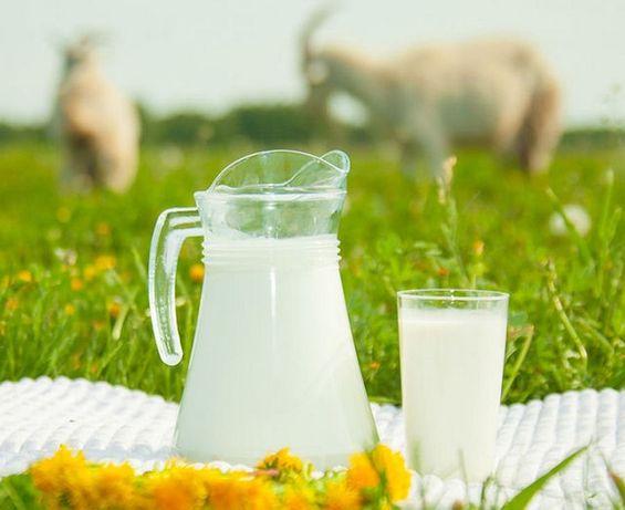 Козье молоко,Ешкі сүті,ешкінің сүті сатылады.