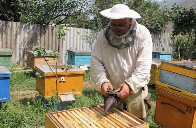 Продам мед, мёд.