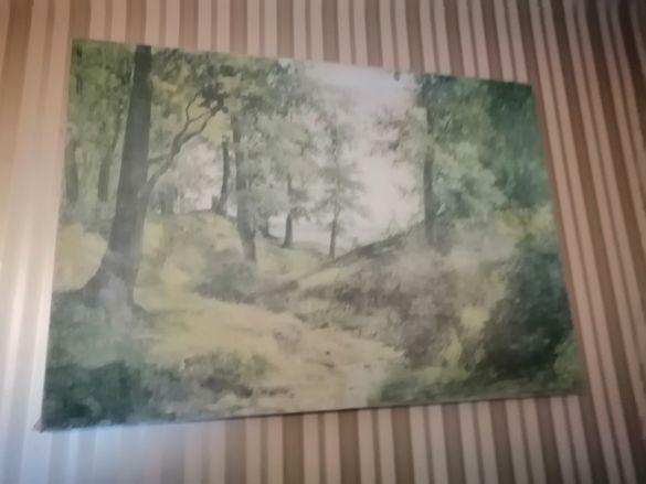 Пано картина горски пейзаж..клшшшш