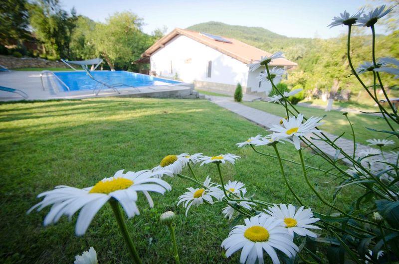 Къща за гости в Еленският Балкан с. Костел - image 1
