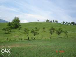 Teren păşune - Urlati Jud. Prahova 5 hectare