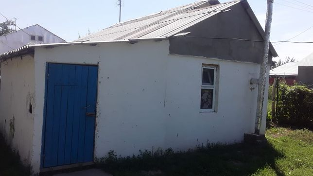 Дача, стеновик ул. Яблноя 90