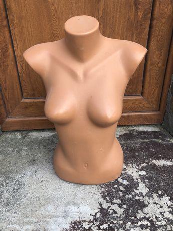 Bust dama