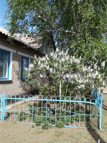 Большой дом Тарановка