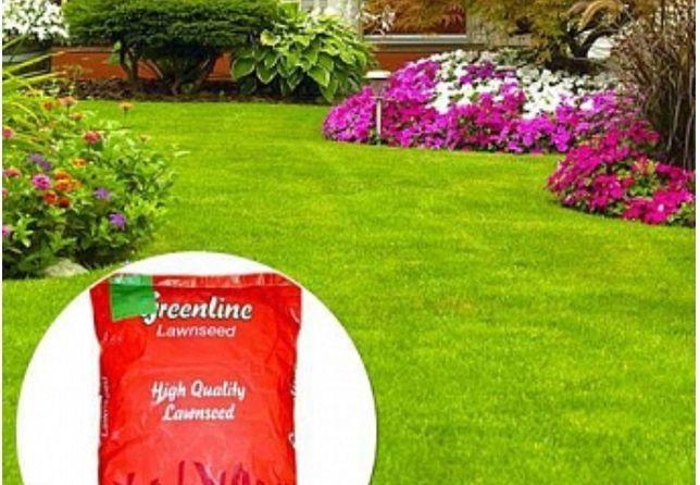 Семена газона GREENLINE 20KG/полив/рулонный газон/уходные работы/озеле
