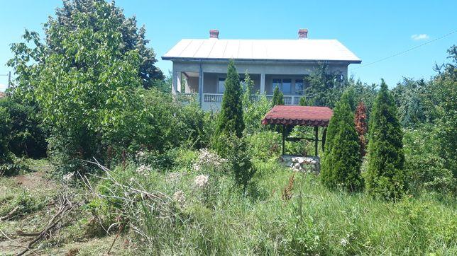 Curatare, igienizare terenuri / amenajare curte si gradina