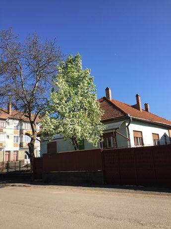 Proprietate - casa de locuit cu anexe gospodărești și teren