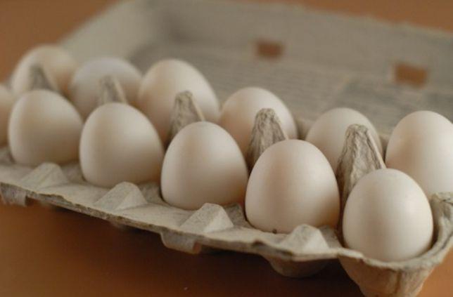 Vand ouă de rață Pekin