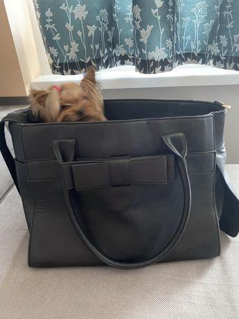 Кожена чанта за домашен любимец куче/котка