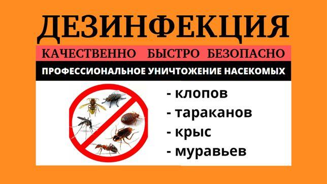 Гарантия! Дезинфекция ос, вшей, клопов, тараканов, крыс, клещей, мурав